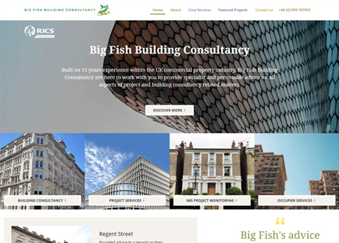 Big Fish Building Consultancy Website